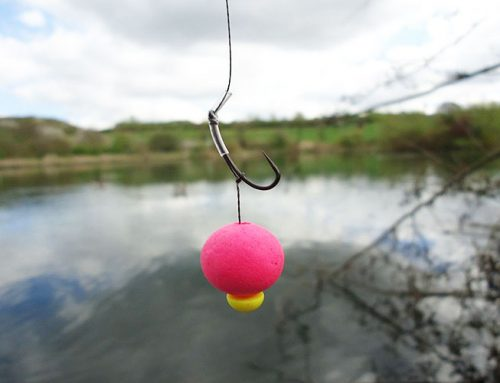 How can you miss these carp fishing terminal tackles if you like carp fishing?