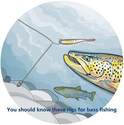 You should know these rigs for bass fishing
